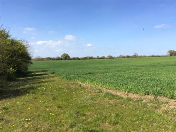 East Anglia Rural Property Sale