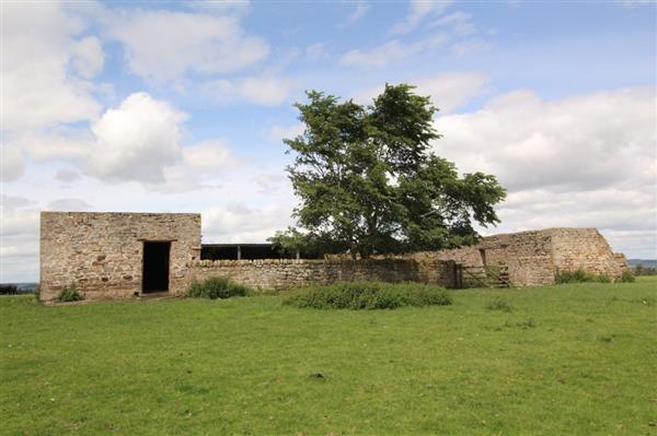 101 Acres High Bracken Hill Lowgate Northumberland Uklaf