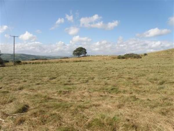 Property For Sale With Land In Knighton Powys
